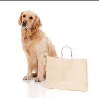 Return and Refund Policy Dog